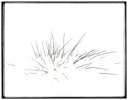 Hiver :: 02 - Imaginaire Line